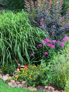 Garden Flowers that Butterlies Love