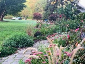 Easy Fall Garden Maintenance