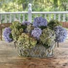 How to Keep Fresh Cut Hydrangeas from Drooping