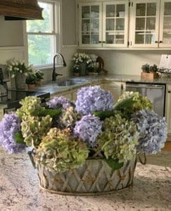 How to Keep Hydrangeas from Drooping