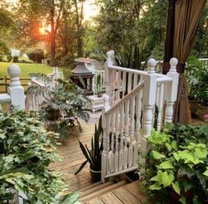 7 Ways to Keep Your Houseplants Alive