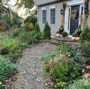 My fall cottage garden.