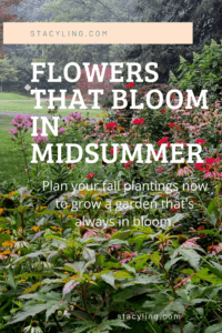 Flowers that Bloom in Midsummer