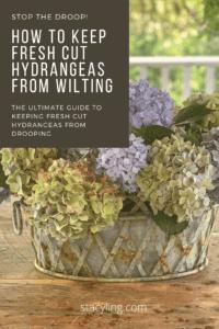 Fresh Cut Hydrangea Arrangement Idea