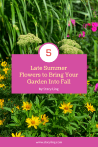 5 Late Summer Flowers to Bring Your Garden Into Fall