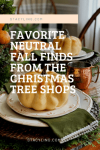 Favorite Neutral Fall Finds from the Christmas Tree Shops