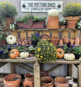 Why You Need a Potting Bench