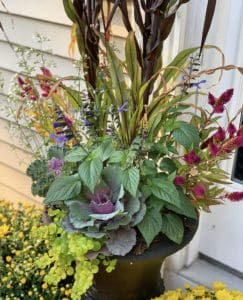 Container Gardem for Fall