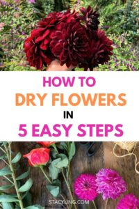 How to Dry Flowers in 5 Easy Steps