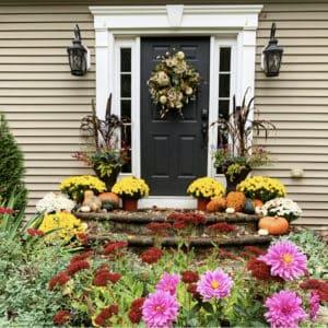 best fall garden flowers
